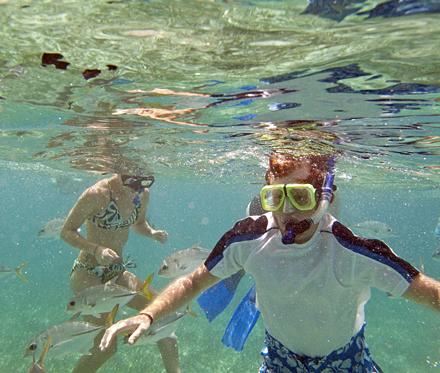 Snorkeling At Belize Keys